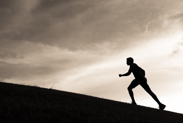 How Exercise May Help the Memory Grow Stronger